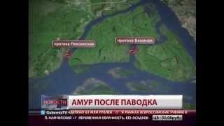 Амур после паводка. Новости. GuberniaTV