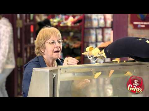 JustForLaughsTV - Most Terrible Claw Ice Cream Salesman