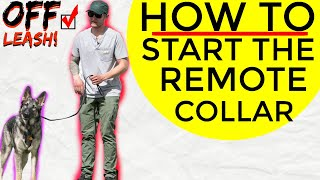 how to use a remote collar to train your dog  Ecollar Dog Training