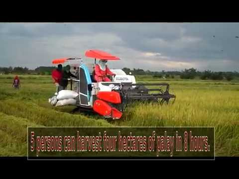 Efficiency of a Rice Combine Harvester in Negros Island , Philippines