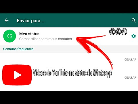 Como colocar vídeos no status do WhatsApp