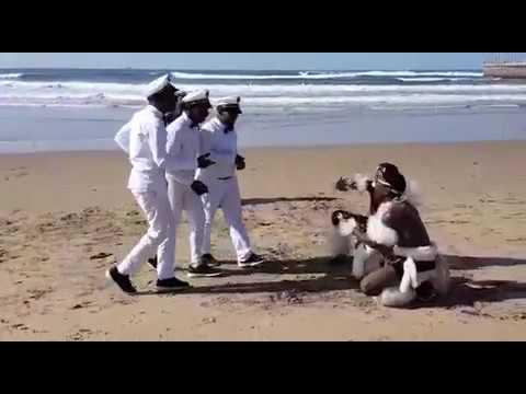 Indlondlo Zulu Dancers VS The Professionals (SA'S GOT TALENT FINALIST)