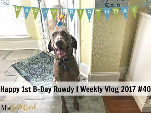 Rowdy's 1st Birthday | Weekly Vlog 2017 #40 | MsGoldgirl