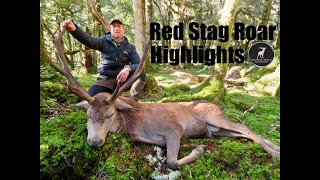 Red Stag Roar, Hunting Highlights