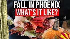 Fall in Phoenix, AZ | Arizona Weather | Living in Arizona | Moving to Phoenix