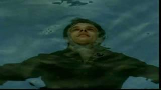 David Hallyday - Tu ne m
