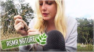 ASMR - BRUITS DE LA NATURE ❤