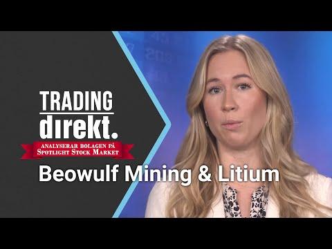 Trading Direkt Analyserar Bolagen På Spotlight 2019-11-20: Beowulf Mining & Litium