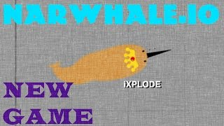 NARWHALE.IO GAMEPLAY // NEW .io Game // BECOME KING NARWHALE!!