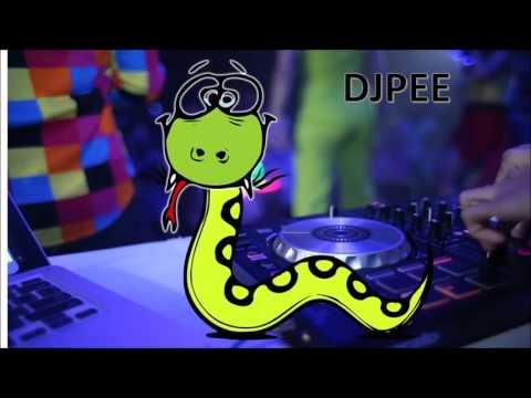 เพลงที่มันมีงูออกมา Burn it Down Dj Pee កប់តែម្តង