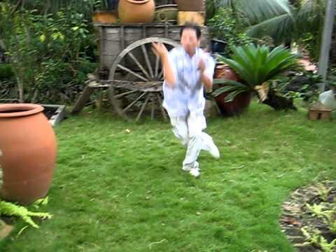 Xà quyền :Múa võ chơi ở Bình Dương ( Lê Văn Dũng )