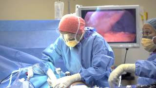 Franciscan Highline Cancer Center: The Surgical Oncologist