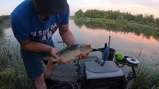 Рыбалка на платном водоеме Ловля карпа и плотвы на платном водоеме 9 карпов