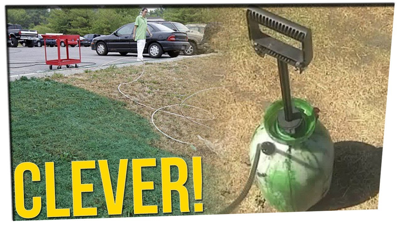 man-paints-his-lawn-to-circumvent-city-code-enforcement-ft-nikki-limo-steve-greene
