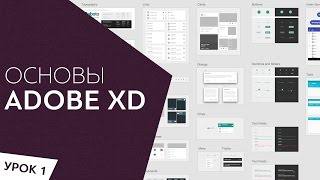 Adobe XD  Обзор программы Урок 1