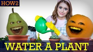 HOW2: How to Water a Plant!