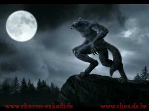 Charon Exkadi - Werwolf