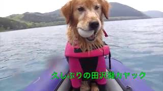 2017.5.23.田沢湖・初チヌーク.