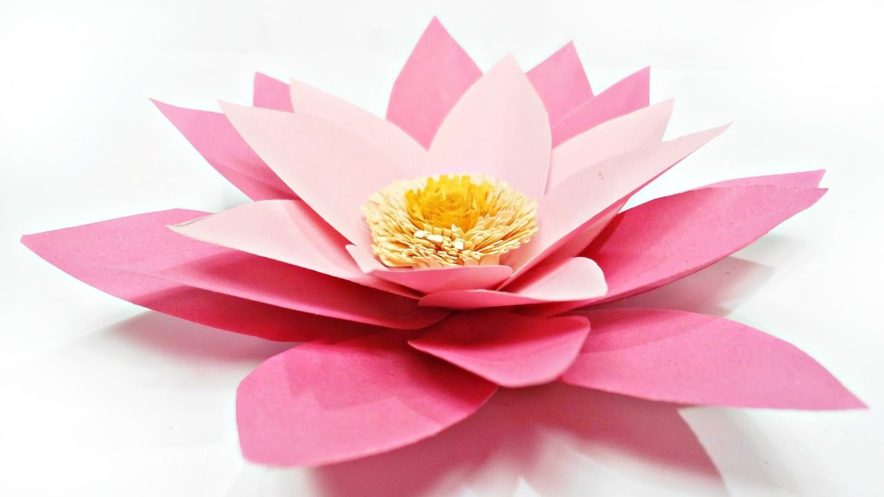 Diy paper flower water lily for wall backdrop decoration arts and diy paper flower water lily for wall backdrop decoration arts and crafts flowers easy for kids izmirmasajfo Gallery