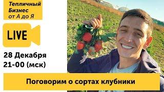 Иван Малич. Сорта Клубники - прямой эфир