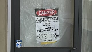 Honolulu Hale tests negative for asbestos, lead