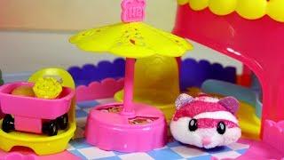 Hamster in a House • Chomiki • Domek i tor przeszkód • OpenBox