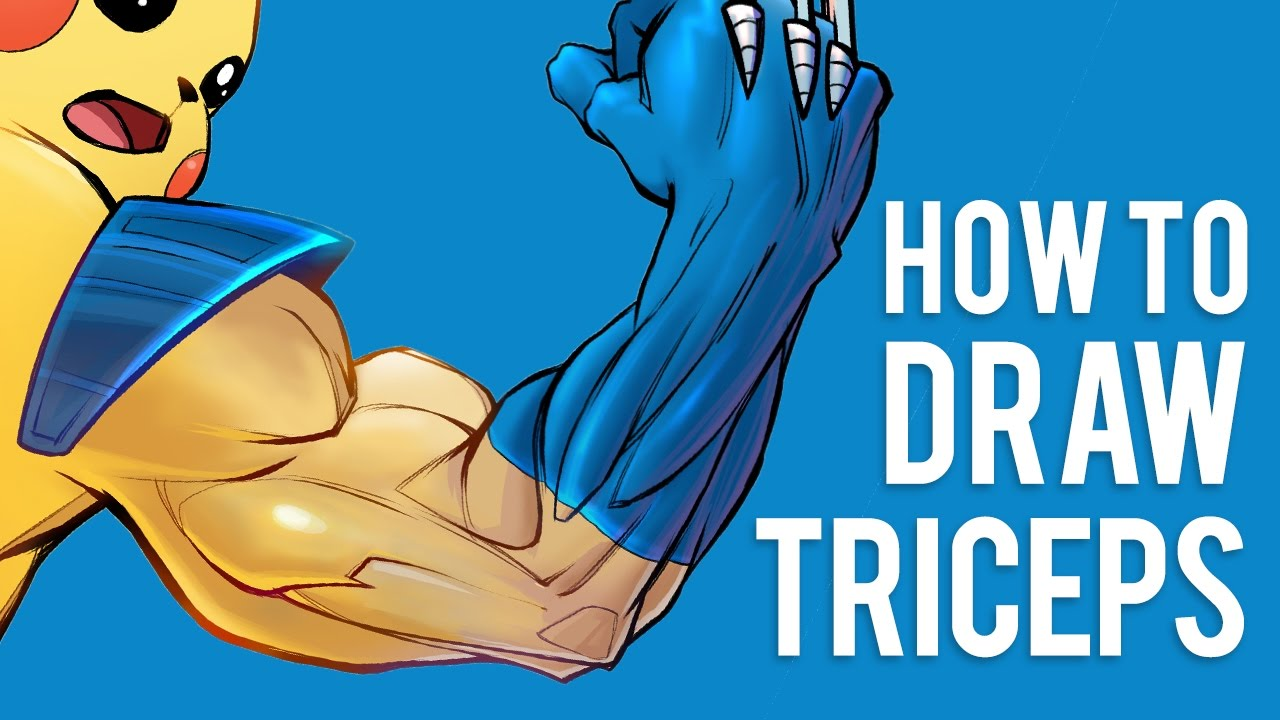 How to Draw Triceps - Arm Anatomy for Artists - YouTube