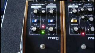 Moog Moogerfooger MF-102 Ring Modulator Guitar Demo