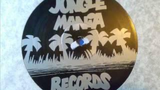 REGGAE LICK - DJ BUSINESS - JUNGLE MANIA 3