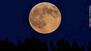 Don't Miss The Last Supermoon Of The Year - Newsy