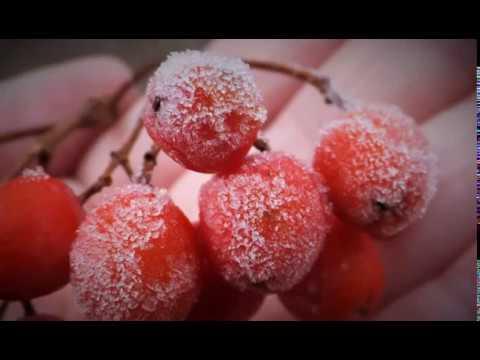 «Барическая пила» - заморозки в Москве, которая самым негативным образом скажется на самочувствии