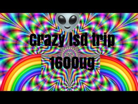 INSANE 1600ug LSD trip!!!