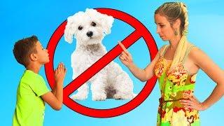 Ясин хочет завести СОБАКУ 🐶 Почему МАМА ЗАПРЕТИЛА всех животных в доме? Я Ясин