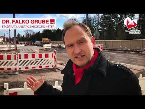 Statement von Falko Grube zu Baumfällungen in Magdeburg