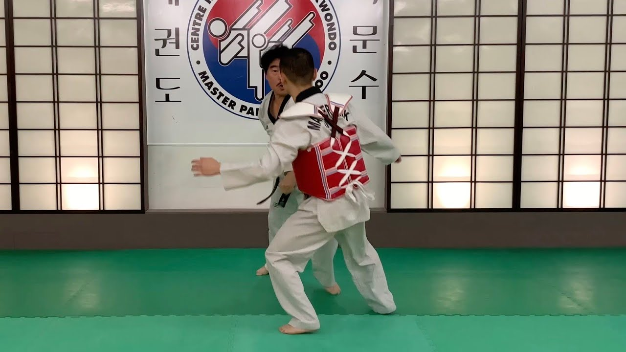 Poomsae / Taegeuk / Il Jang / 품새 / 태극 / 일장 / Master Park Moon Soo