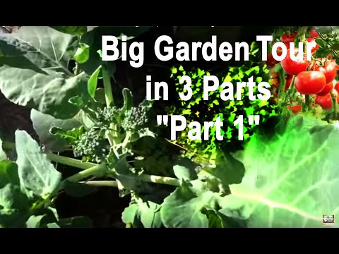 garden-tour-april-growing-food-in-front-yard-container-gardening-compost-in-place-vegetables-part-1