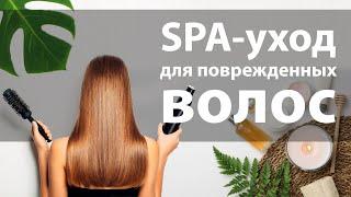 Spa уход для поврежденных волос Verba Mayr