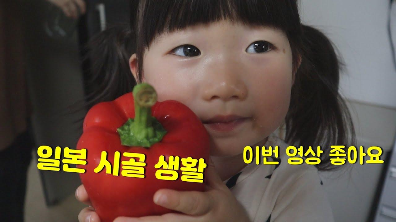 일본 시골 생활♬ 비오는 날 돼지고기 야채볶음 ♪ 가족 공원 운동(한일부부,국제커플,日韓夫婦)