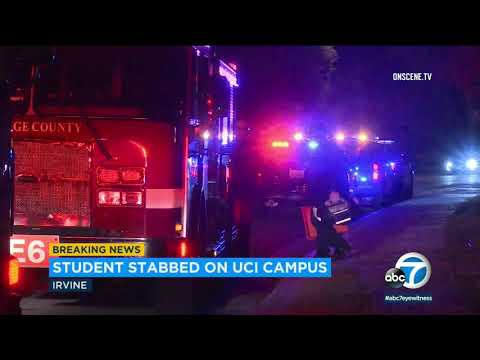 Bootleg Kev - Woman Stabbed on UC Irvine Campus While Walking Dog