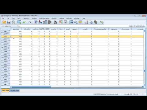 Data cleaning in SPSS