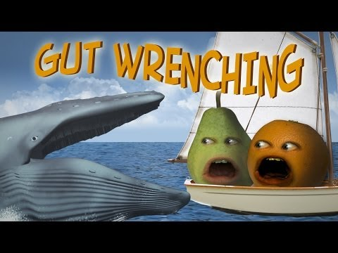 Annoying Orange - Gut Wrenching (Ft. Steve Zaragoza as Captain Obvious!)