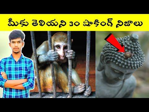 Top 30 Amazing and interesting facts in Telugu | Bmc facts | Telugu