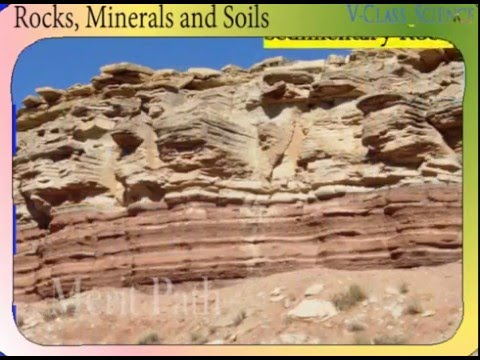 Class v science rocks minerals soil igneous diseases for What are soil minerals