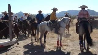 Coleadera en Abasolo Rodeo, Durango