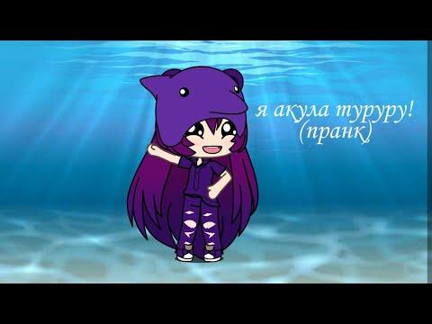Акуленок я ТУРУРУРУ XD