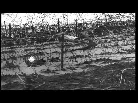 A wire cutting grapnel is fired by 5 inched C.W. rocket to remove beach obstacles...HD Stock Footage