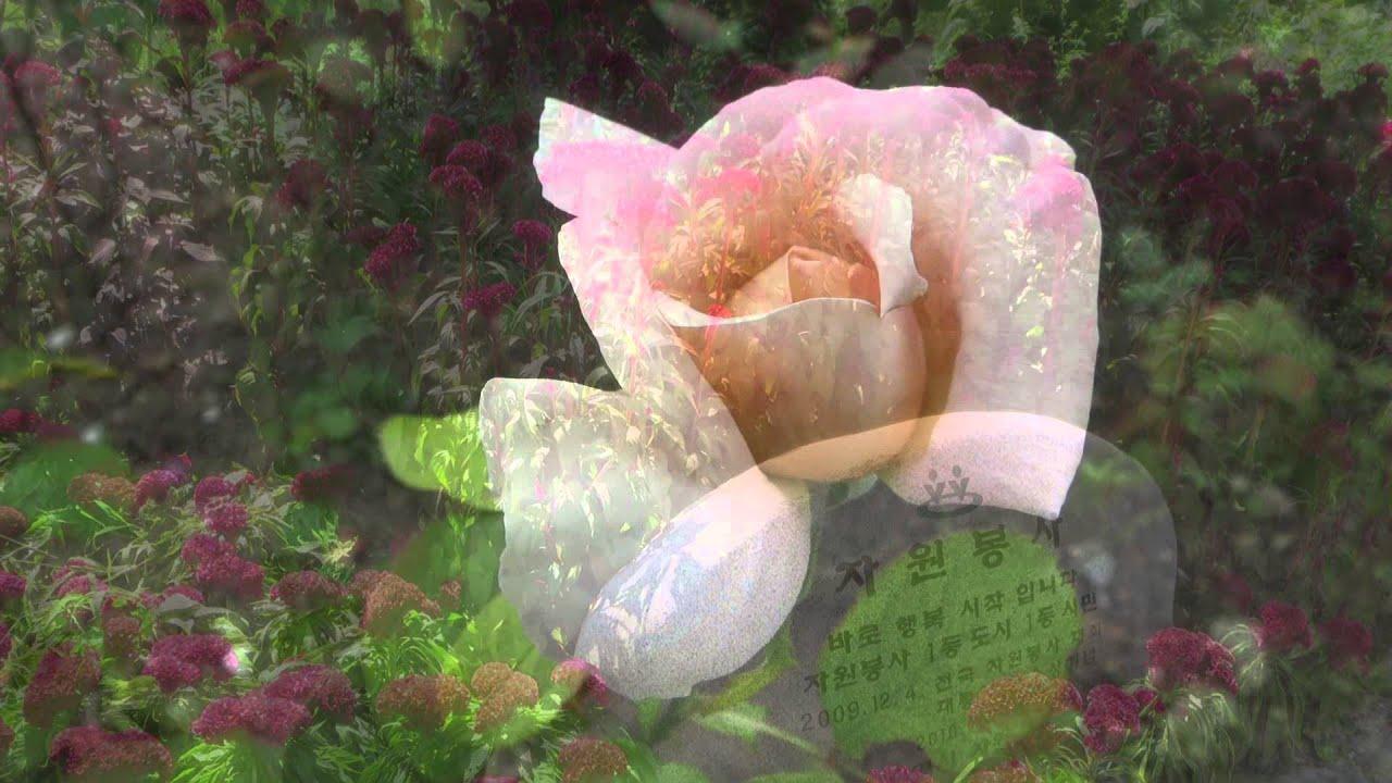 Flower Duet 2014