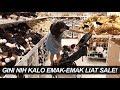 Gini Nih Kalo Emak-Emak Liat SALE di Ikea, Semua Pengen di Beli!   RIRIEPRAMS