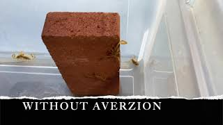 AVERZION V1.0