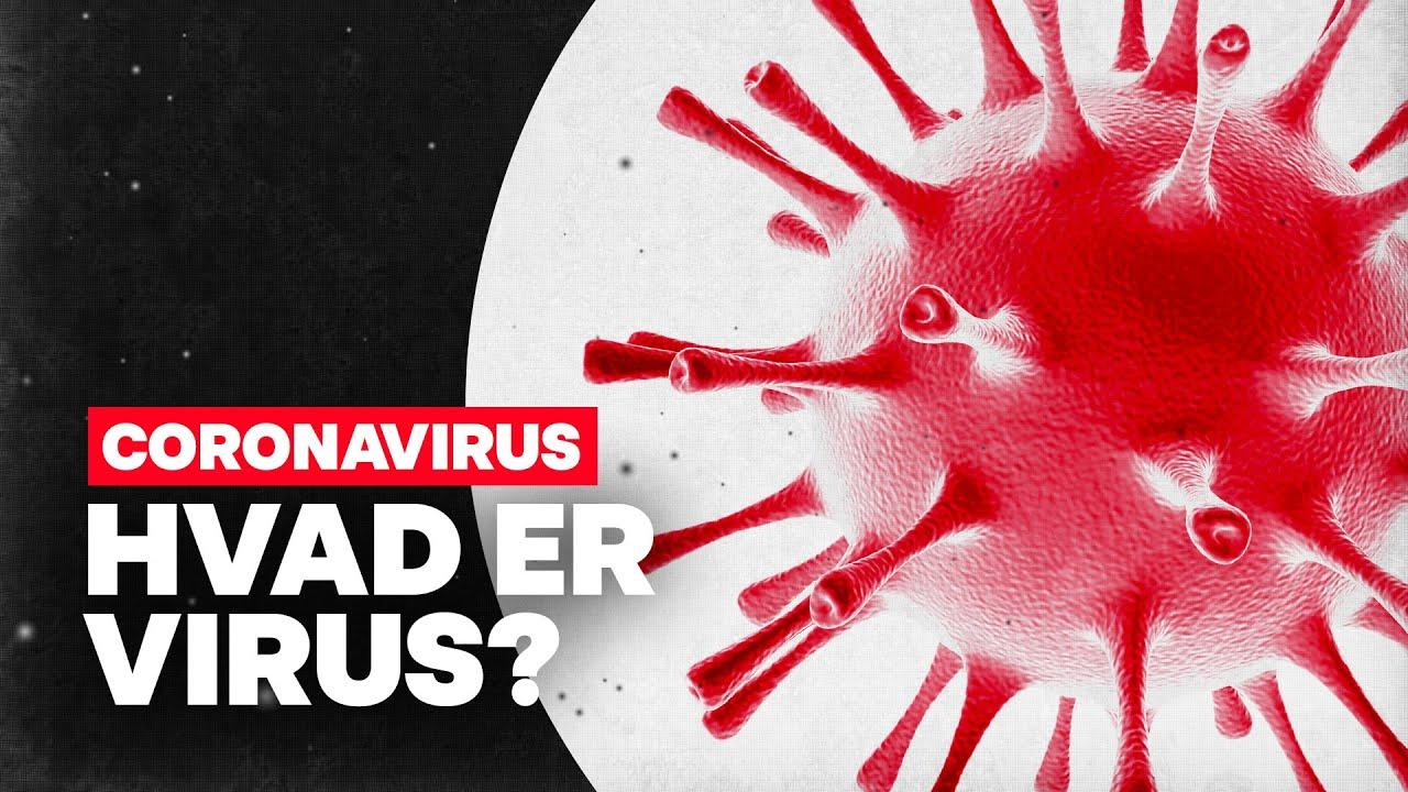 Hvad er virus egentlig?